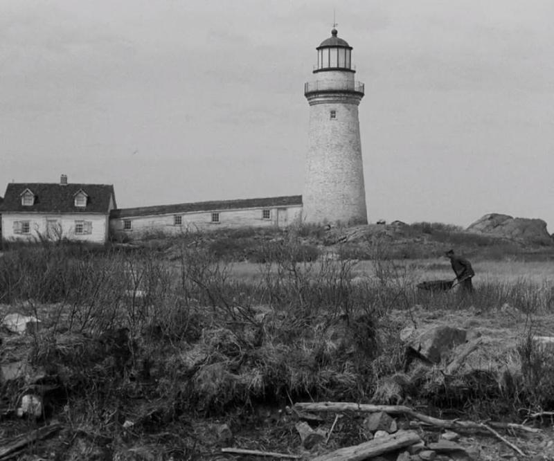 the_lighthouse_film